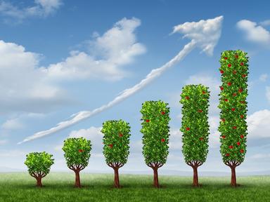 Giuseppe Ramerini tecniche di vendita: business growth